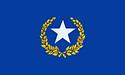 Newutopia-flag-s