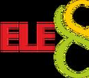 Grupo TeleOcho