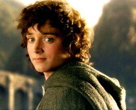 Frodo Baggins3