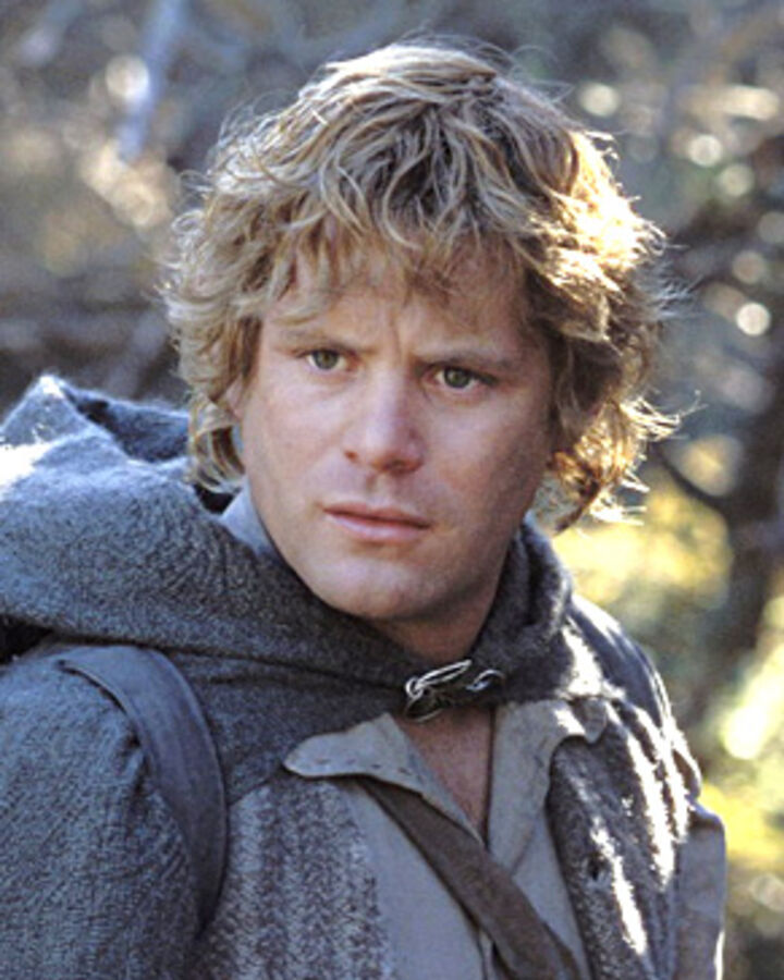 Sam Gamgee The Hobbit Lotr Wiki Fandom