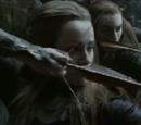 Mirkwood Elf Hunter V
