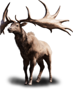 Far cry primal tall elk