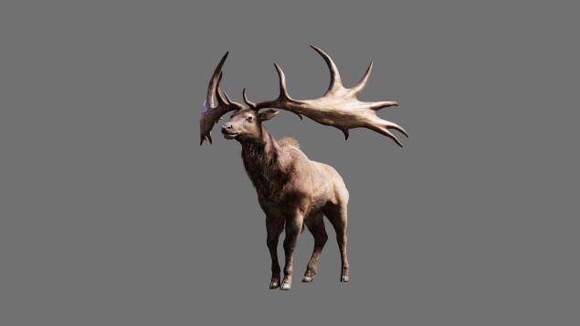File:FCP Render Deer IrishElk BeastMaster Reveal 151204 5AM CET 1449251220-635x357.jpg