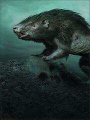 Creatures-morgul-rat-b6954080cc