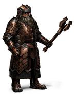 Erebor Heavy Regal Armor Nobleman 2
