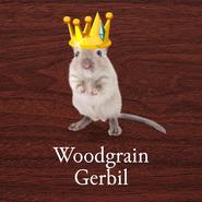Woodgrain Gerbil