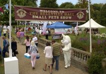Bellville-hall-small-pets-show