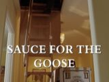 Sauce for the Goose
