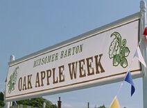 Oak-apple-week