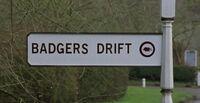 Badgers-drift-01
