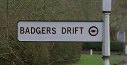 Badgers-drift-01