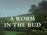 A Worm in the Bud