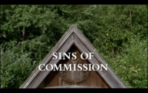 Sins-of-commission