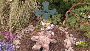 Sykes-memorial