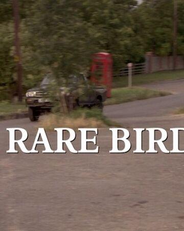 A Rare Bird Midsomer Murders Wiki Fandom