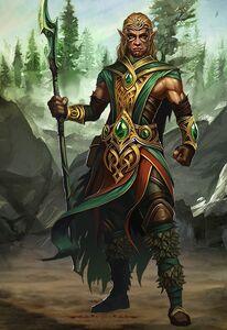 Druid male