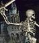 Heroes III Skeleton Icon