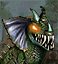 GreaterBasilisk icon