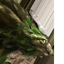 Szmaragdowy Smok (H7) portret