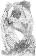 Firebird AB artwork