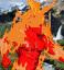 FireElemental III icon