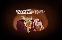 Pachydermus Interruptus Title Card
