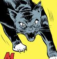 Amos (Cat) (Earth-616).jpg
