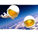 Astronaut (FV)