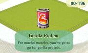 Gorilla Protein