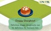 Doggy doughnut