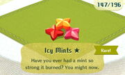 Icy Mints 1star
