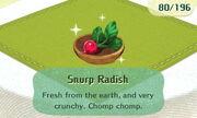Snurp Radish