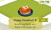 Doggy doughnut rare