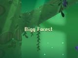 Bigg Forest