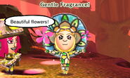 Gentle Fragrance