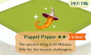 Puppet Pepper 2star