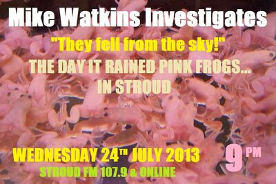 PINK FROGS