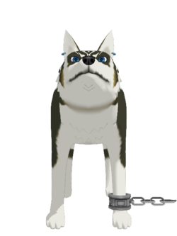 Wolf Link Nai