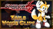 "Miles ""Tails"" Prower - All Voice Clips - Shadow the Hedgehog Game 2005"