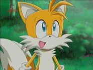 Sonic X Tails Are Very Good and Excited