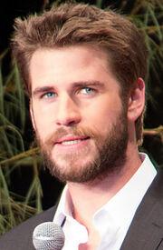 Liam Hemsworth June 2016