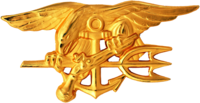 A gold image depicting an eagle perched on an anchor, clutching a trident with one claw and a gun in the other.