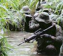 Corpo de Fuzileiros Navais do Brazil
