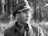 List of Knight's Cross of the Iron Cross with Oak Leaves, Swords or Diamonds recipients of the Luftwaffe fighter force