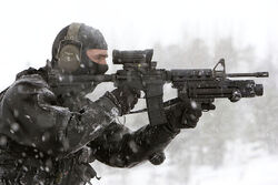 Diemaco C8 carabine with Elcan C79 sight and grenade launcher