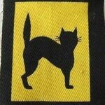 22 Regiment Royal Artillery Badge.jpg