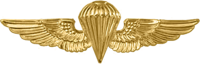 A gold image of a parachute with wings.
