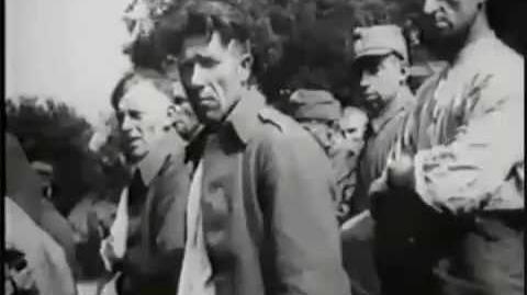 Polscy jency 1939 - (Polish POW 1939)