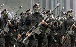 Fuerzas Especiales Michoacán