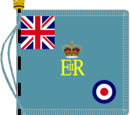 Colours, standards and guidons